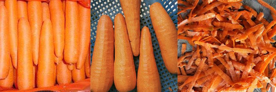 胡萝卜去皮机